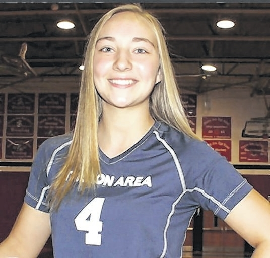2016 Times Leader Girls Volleyball All-Stars