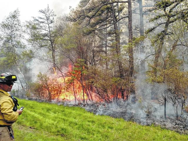 Prescribed fire emerges as a valuable tool to create wildlife habitat