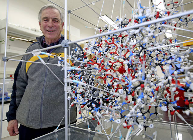 University of Alaska Fairbanks College of Natural Sciences & Mathematics biochemistry professor Larry Duffy poses next to a myoglobin model in the lab in the university's West Ridge Research Building in Fairbanks, Alaska. Throughout his career, Duffy has studied a variety of problems specific to life in the Arctic.
