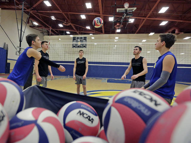 Misericordia men's volleyball players Matthew Churchill, left, Caleb Bauder, Bailey Brugler, Ryan Miller, and Michael Mohutsky warm up before a recent practice.