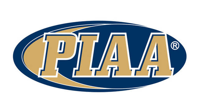 Valley West sophomore diver Ginocchetti finishes among PIAA top 16