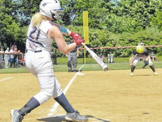PIAA softball: Nanticoke Area's impressive run ends in 4A semifinals