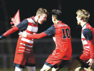 D2 boys soccer: Senior Gariano scores twice to lead Crestwood to 3A finals