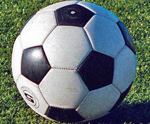 Historic season ends in state quarters for Wyoming Area girls soccer team