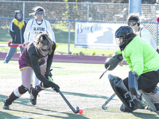 Stelma's goal lifts Valley West into state field hockey semifinals