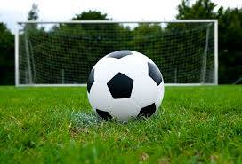 PIAA girls soccer: Keeper Kelly helps keep Wyoming Area's big run alive