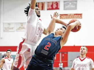 H.S. Boys Basketball: Da'Mir Faison, Nate Kreitzer, Dimitri Gnall named divisional MVPs