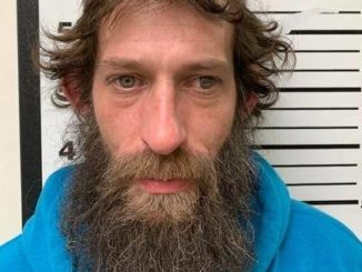 Domestic dispute leads to meth lab discovery in Hanover Township