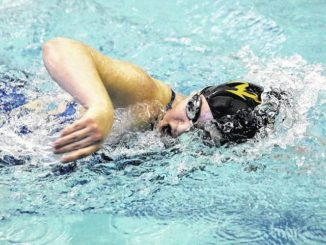H.S. Swimming: Paul Flowers, Hazleton Area finishes strong at districts