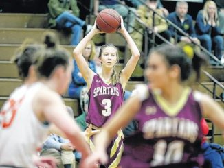 H.S. Girls Basketball: Spartans' run in states ends vs. Palmyra