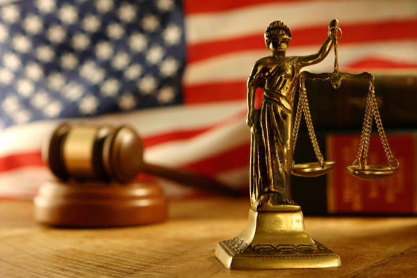 Court Briefs
