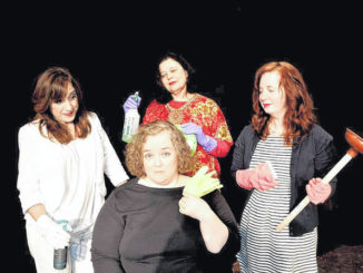 Actors Circle brings 'The Clean House' to Scranton