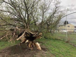 Many areas still without power after storm