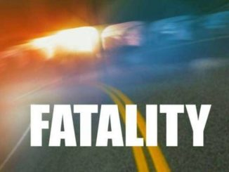 Reyburn man struck by car in Plymouth dies