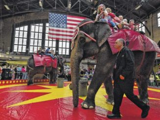 Circus again draws fans, foes to armory