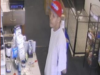 Police: Armed robber stole Rottweiler from WB pet store