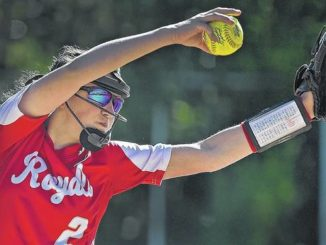 District 2 Softball: Aleah Pekarovsky leads Holy Redeemer past Lakeland