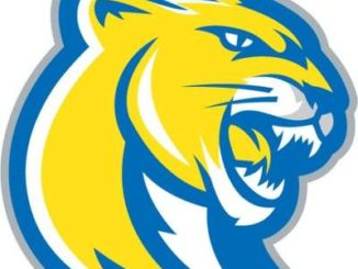 Misericordia baseball drops opening game of super regional