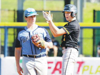 Wyoming Valley Conference baseball reaching new heights in the postseason