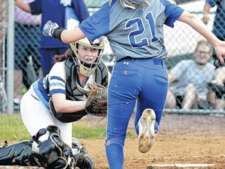 H.S. Softball: Wyoming Seminary edged for D2-3A title by Mid Valley