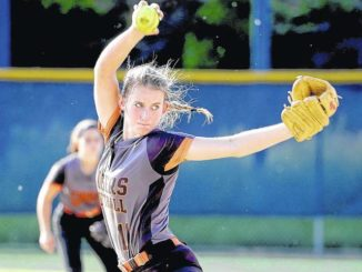 H.S softball: District 2 playoffs offer teams a chance at redemption