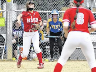 PIAA semifinal matchups set for Hazleton Area softball, Lake-Lehman baseball