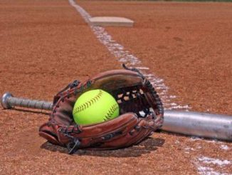 Mountain Top claims D16 softball title