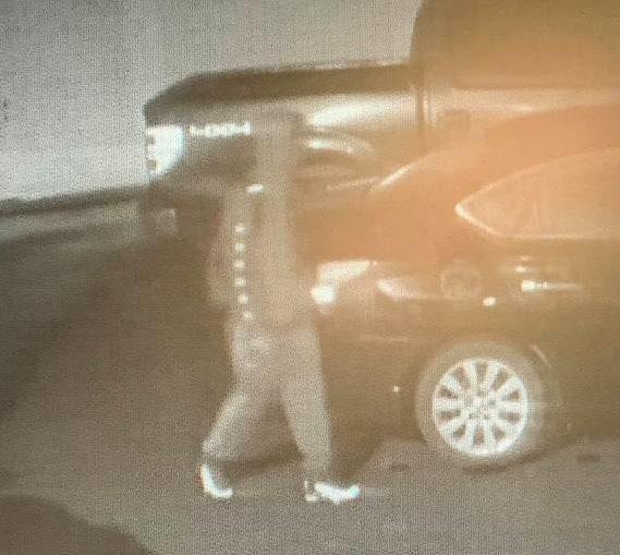 Sneak thief arrested in Kingston burglary spree