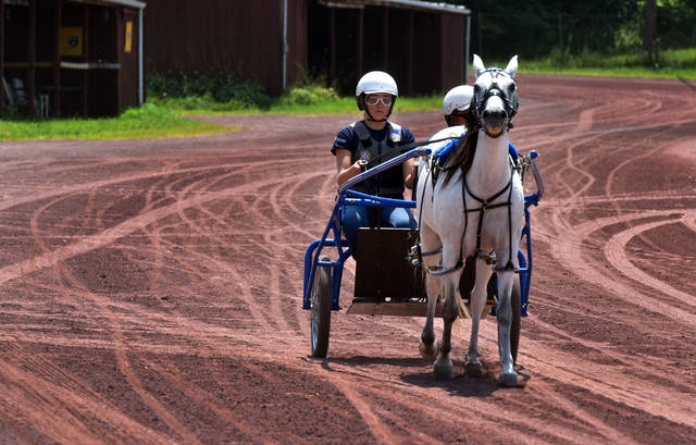 Cali Moore, 16, of Hughesville, drives a horse named Homer, alongside professional driver Jan Fread, on Tuesday afternoon. Cali was one of seven young participants in the Harness Horse Youth Foundation Summer Camp, held from Monday through Wednesday at The Downs at Mohegan Sun Pocono, and said driving the jog cart was the best part of the camp. Aimee Dilger   Times Leader