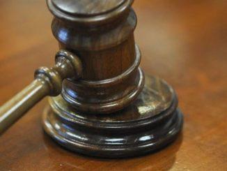 Dog walker case sent to court