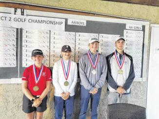 District 2 Golf: WVC shines at District 2 tournament