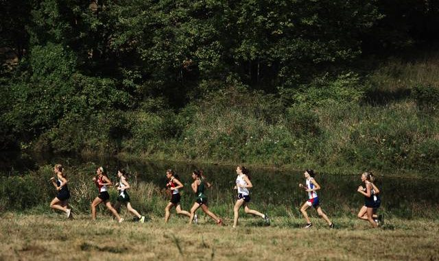 Wyoming Valley Conference cross country runners excel in