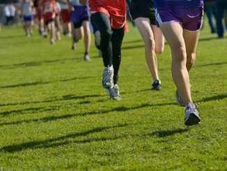 D2 cross country preview: WVC entries aim to defend district titles
