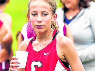 High School Cross Country: Royals, Comets, Cougars win multiple titles
