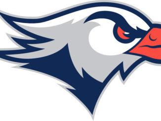 Lackawanna College football falls short in NJCAA championship game