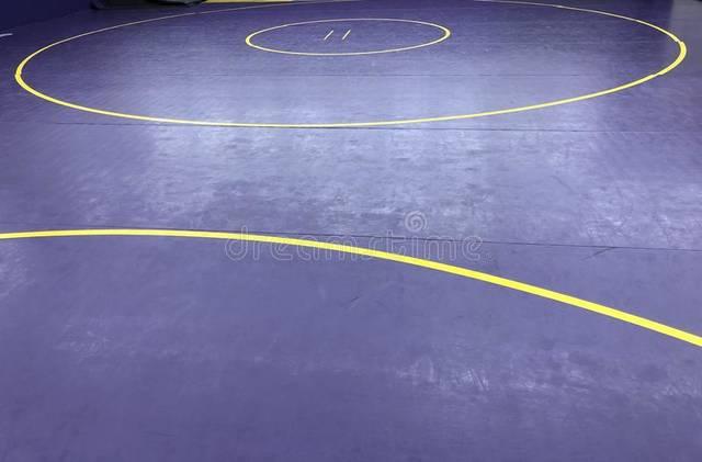 https://s24526.pcdn.co/wp-content/uploads/2019/12/web1_dark-purple-gold-yellow-wrestling-wrestling-mat-110004977.jpg