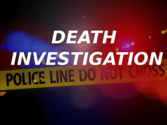 Human remains found in wooded area of Pittston Township