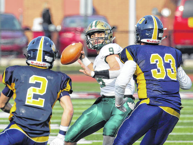 H.S. Football: Wyoming Area's Dominic DeLuca, Randy Spencer chosen best on PA Football News all-state team