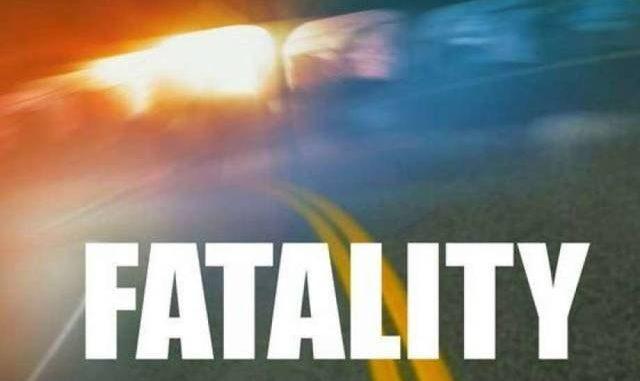 Pedestrian, 35, dies after being struck on Route 11 | Times Leader
