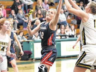Baird's two free throws lead Nanticoke Area girls over Lake-Lehman in D2 tournament