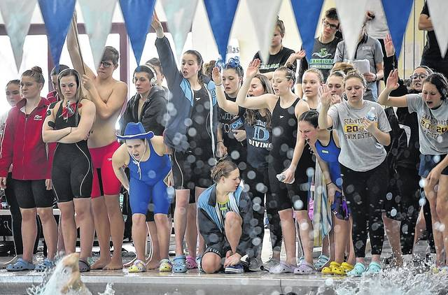 Dallas swim team members cheer on teammates during Friday's first day of competition at the District 2 championships in Wilkes-Barre. The boys squad won the Class 2A title while the girls finished second on Saturday.                                  Aimee Dilger   Times Leader