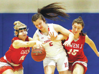PIAA girlsbasketball: Hazleton Area eliminated by Owen J. Roberts in Class 6A first round