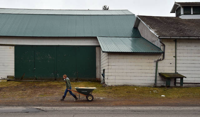 Animal care continues at farms: 'Very skeleton crew' keeps Hillside operating