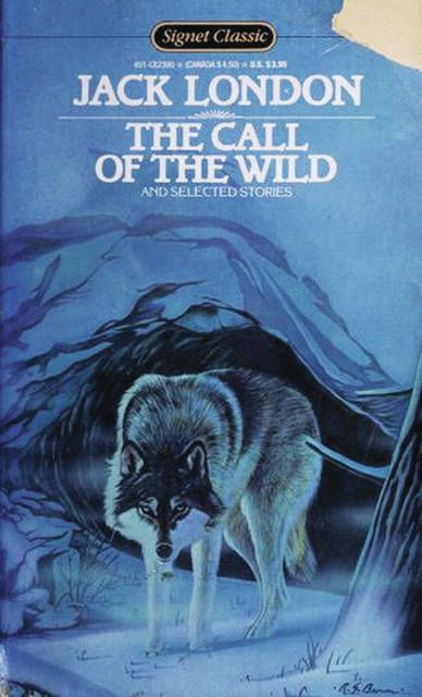 'The Call of the Wild' is just one of many books that can take you to the great outdoors when you are stuck inside.