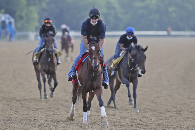 <p>Tap It to Win, center, is one of the top contenders to win today's Belmont Stakes, which for the first time is serving as the first leg of the Triple Crown</p> <p>Seth Wenig | AP photo</p>