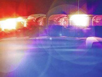 Police: Homeowner fires shot after trespasser pries open door