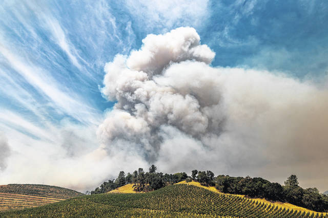 In this Aug. 18, 2020, file photo, a plume rises over a vineyard in unincorporated Napa County, Calif., as the Hennessey Fire burns. Smoke from the West Coast wildfires has tainted grapes in some of the nation's most celebrated wine regions. The resulting ashy flavor could spell disaster for the 2020 vintage.                                  AP photo