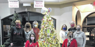The General Federation of Women's Clubs (GFWC)-West Side is sponsoring a Christmas tree for the Dinners For Kids program as a part of the annual Parade of Trees at Grotto Pizza, Harvey's Lake.                                 Seated left to right are club members Deidre Kaminski, GFWC-West Side Education chairman; and Gina Rushkowski, president of GFWC- West Side.                                 Standing left to right are club members Christina Kinsman, Tina Stella, Becky McCuen, Eileen Gallagher, GFWC West Side secretary; Mary Ladish and Rosemary Luksha.                                 Absent from the photo are: Pat Motyka, Betty Bauman, Aileen Whalen, Nancy Coach and Barbara Roche.                                  Submitted photo